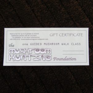 Gift Certificate for one Guided Walk