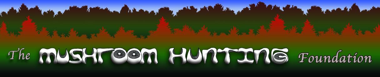 Mushroom Hunting Foundation
