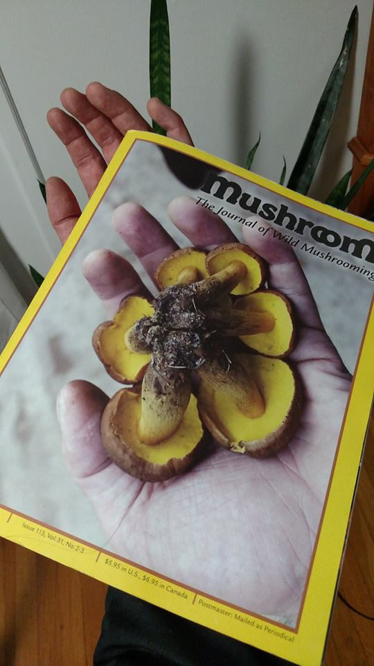 MushroomJournal